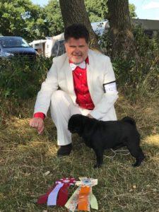 Black pug champion